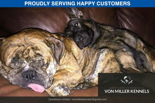VonMillerKennels_Happy-Customer-4