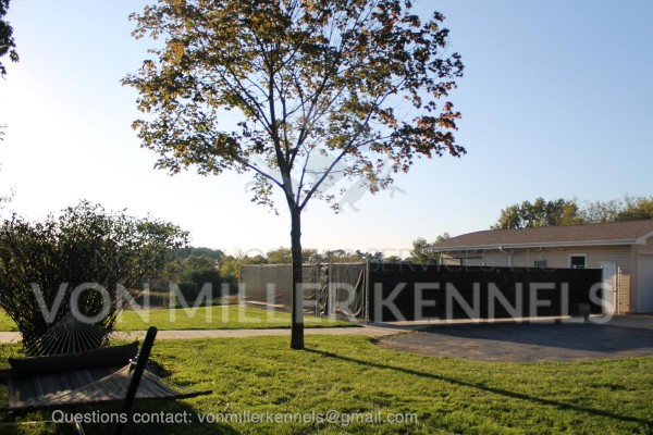 VonMillerKennels_Facility_watermarked_3