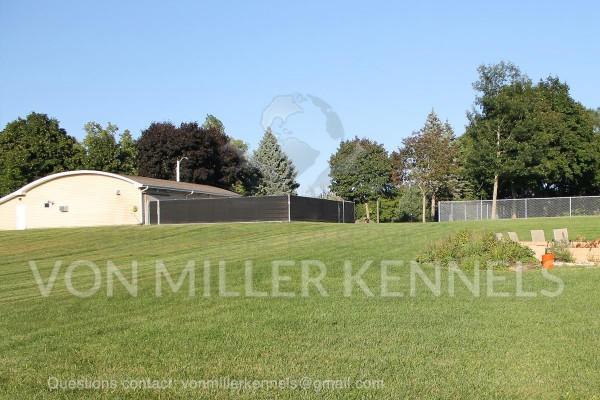 VonMillerKennels_Facility_watermarked_7