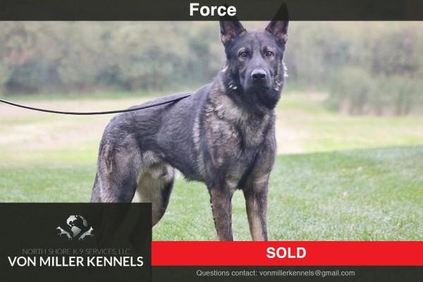 VonMillerKennels_Force-Sold